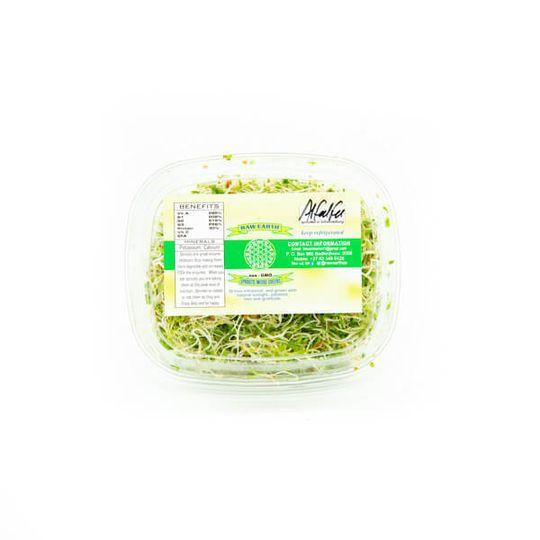 Alfalfa Sprouts (100g)