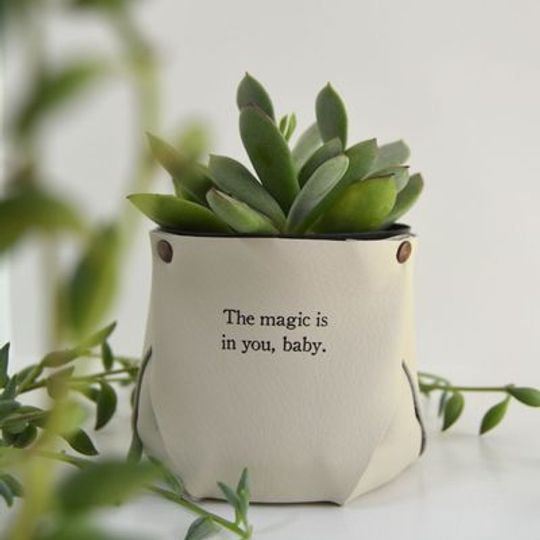 Little Leather Pots of Love
