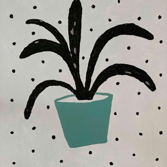 Blue Pot Plant