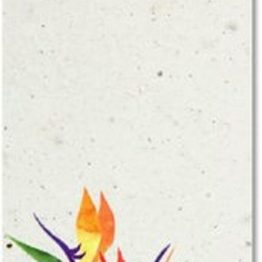 Bookmark | Strelitzia