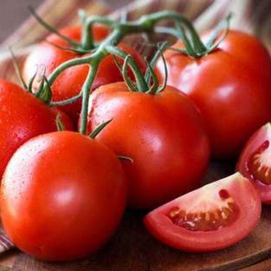 Woza Herbs Med Vine Tomatoes