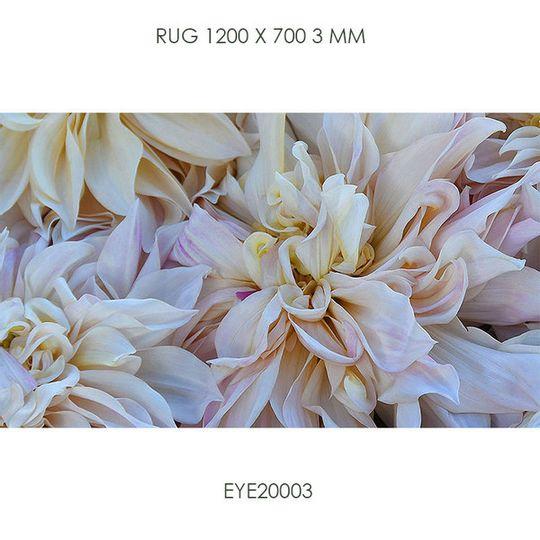 Floor Mat 700x1200mm EYE20003