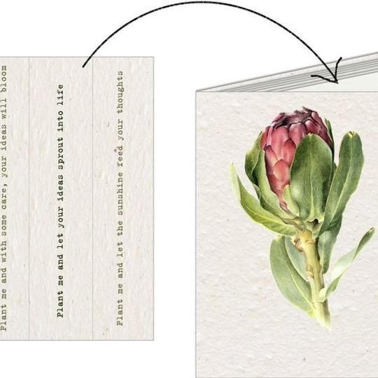 Notebook | Protea