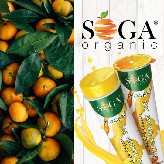 Soga Organic Frozen Orange Rocket  (100ml)