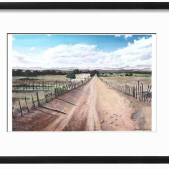 Karoo farm road