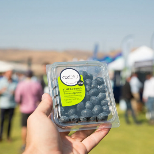 Blueberries (125g) - OZblu