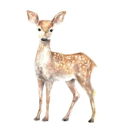 Watercolour Deer Decal