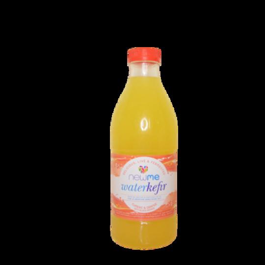NuMeSA Turmeric Orange Water Kefir (1L)