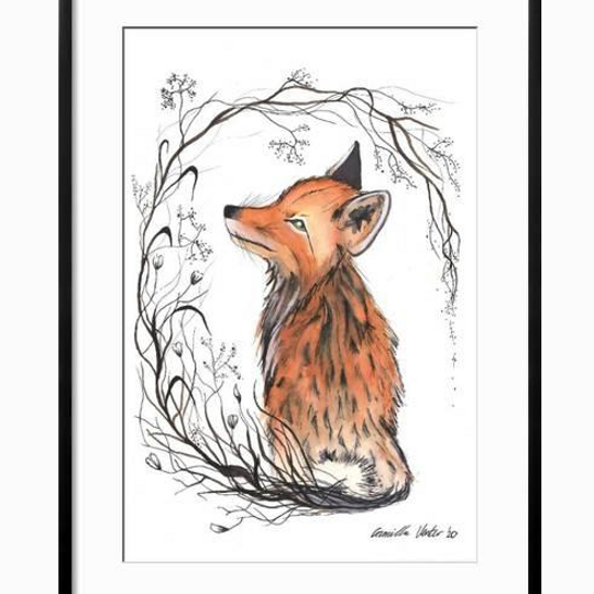 Vine tailed fox