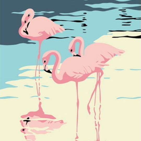 Flamingo or Three