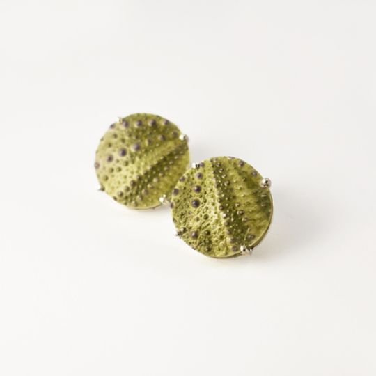 Green Sea Urchin Studs