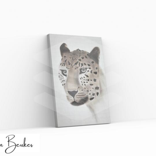 Gazing Leopard | Original Prints on Canvas
