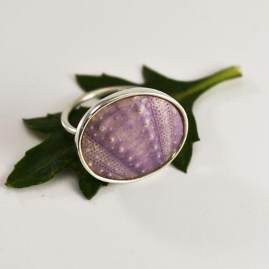 Big Lilac Sea Urchin Ring