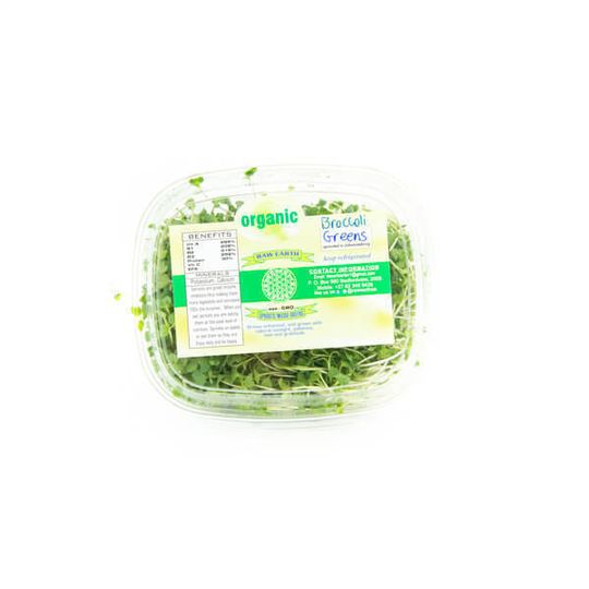 Broccoli Green Sprouts Organically Grown