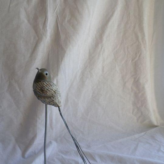 STONE-BIRDS