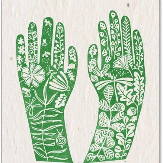Stel van 5 x 'Growing Paper' Kaartjies • AFRIKAANS