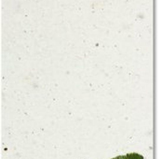 Bookmark | Hoopoe