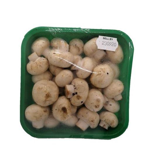 Mushrooms Buttons