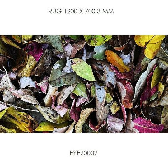 Floor Mat 700x1200mm EYE20002