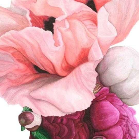 Poppies and Peonies