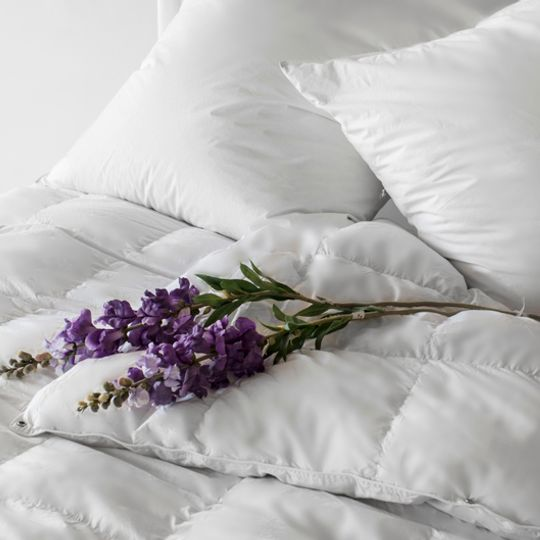 Superior Quality Goose Down Autumn Duvets