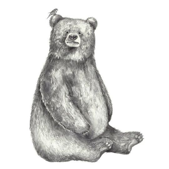 Hand-Sketched Bear Decal