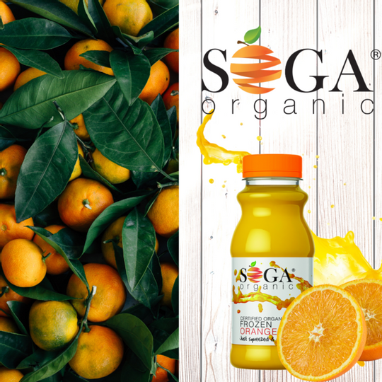 SOGA  Organic Frozen Orange Juice (250ml)