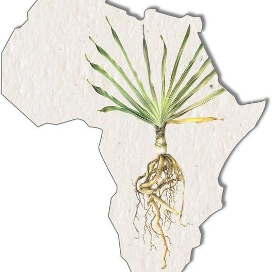 Set of 3 gift tags | Botanical Africa Shape