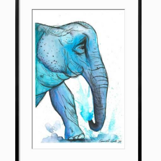 Blue Indian Ellie