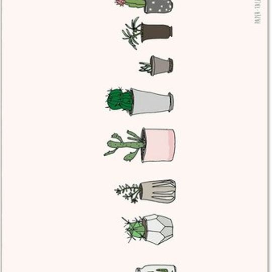 Greeting Card | Cactus