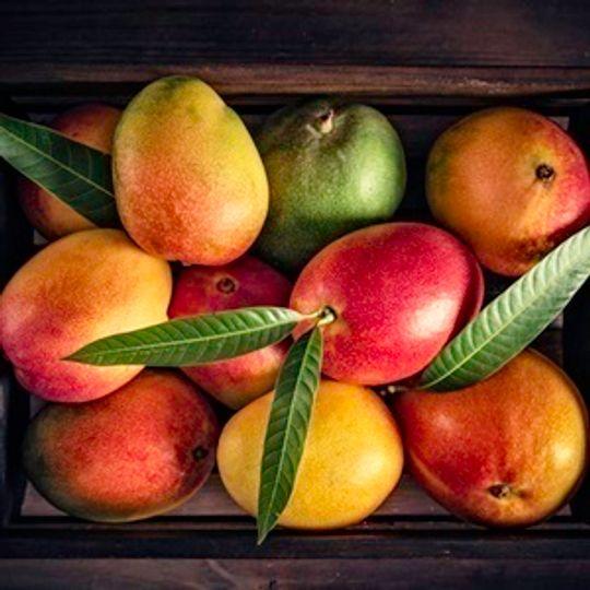 Mangoes (1 Box)