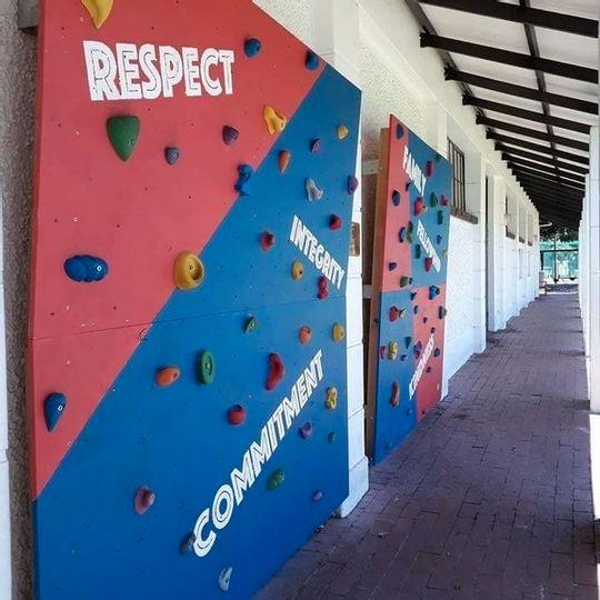 Kids Climbing Wall Grip Set