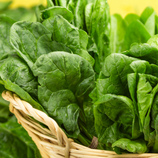 Fordhook Giant Spinach (350g)