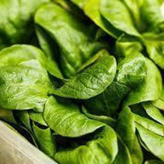 Woza Baby Spinach (300g)