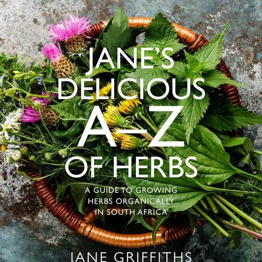 Jane's Delicious A-Z of Herbs  by Jane Griffiths (Paperback)