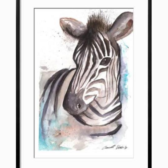 Zebra blue splash