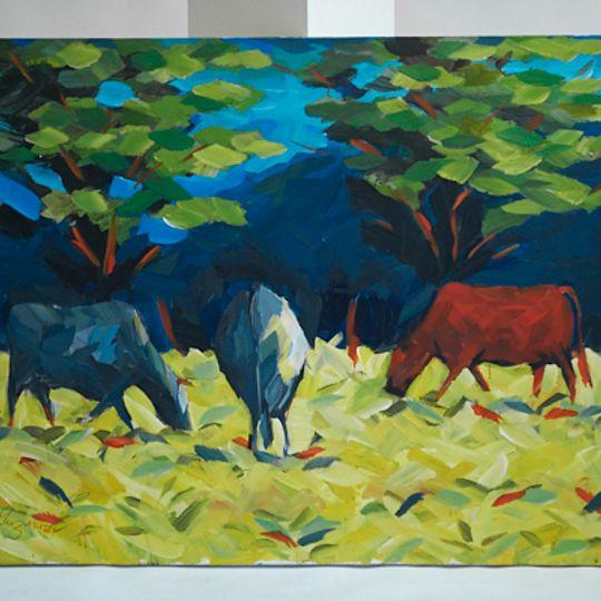 three Stellenbosch Cows in a field