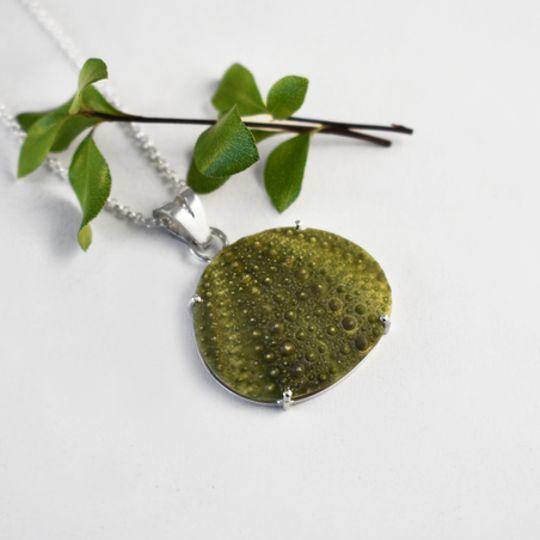Bold Sea Urchin Necklace