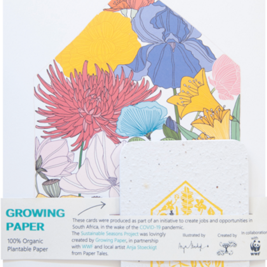 1 x A4 Frameable Print & 5 Growing Paper Cards